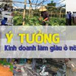 11 ý tưởng kinh doanh làm giàu ở vùng nông thôn với số vốn ít