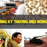Hướng dẫn đăng ký thương hiệu nông sản theo quy định