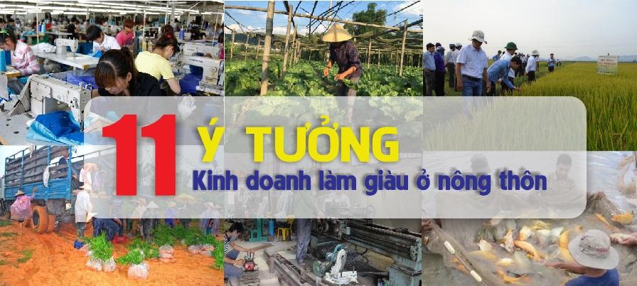 Ý tưởng kinh doanh làm giàu ở nông thôn
